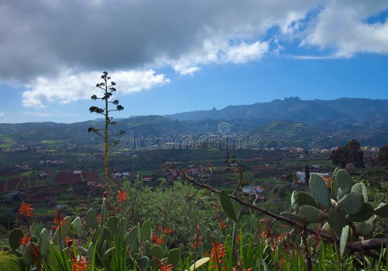 内地大加那利岛,往中央山的看法 免版税库存图片