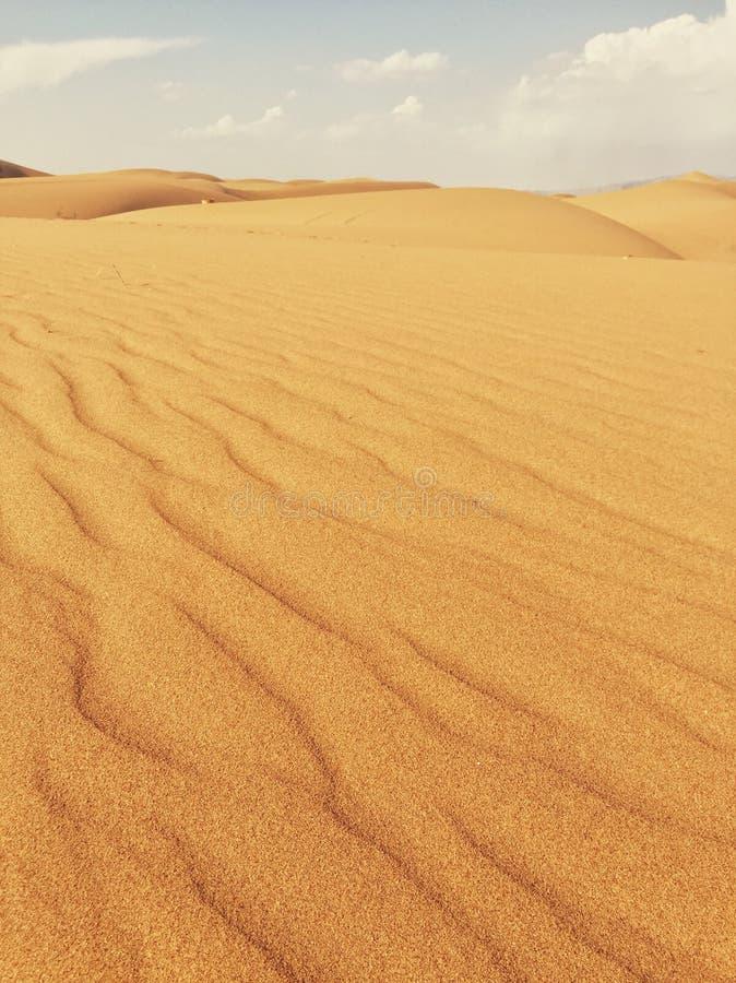 内蒙古沙漠 库存照片