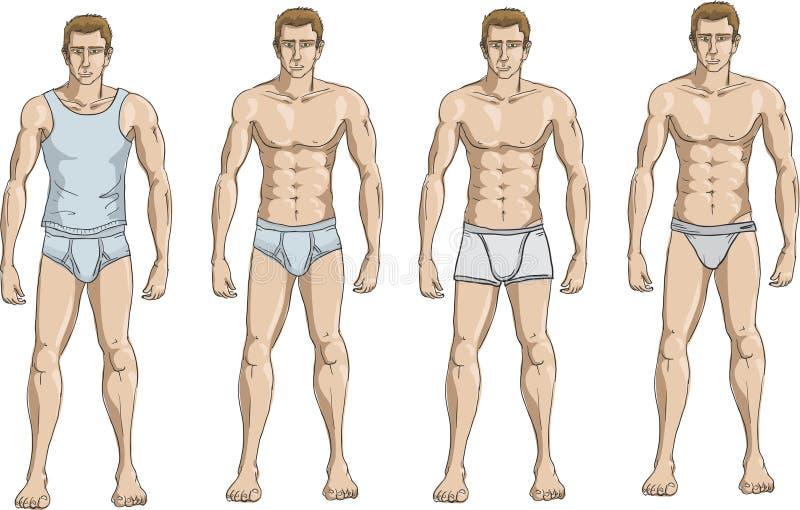 内衣 向量例证