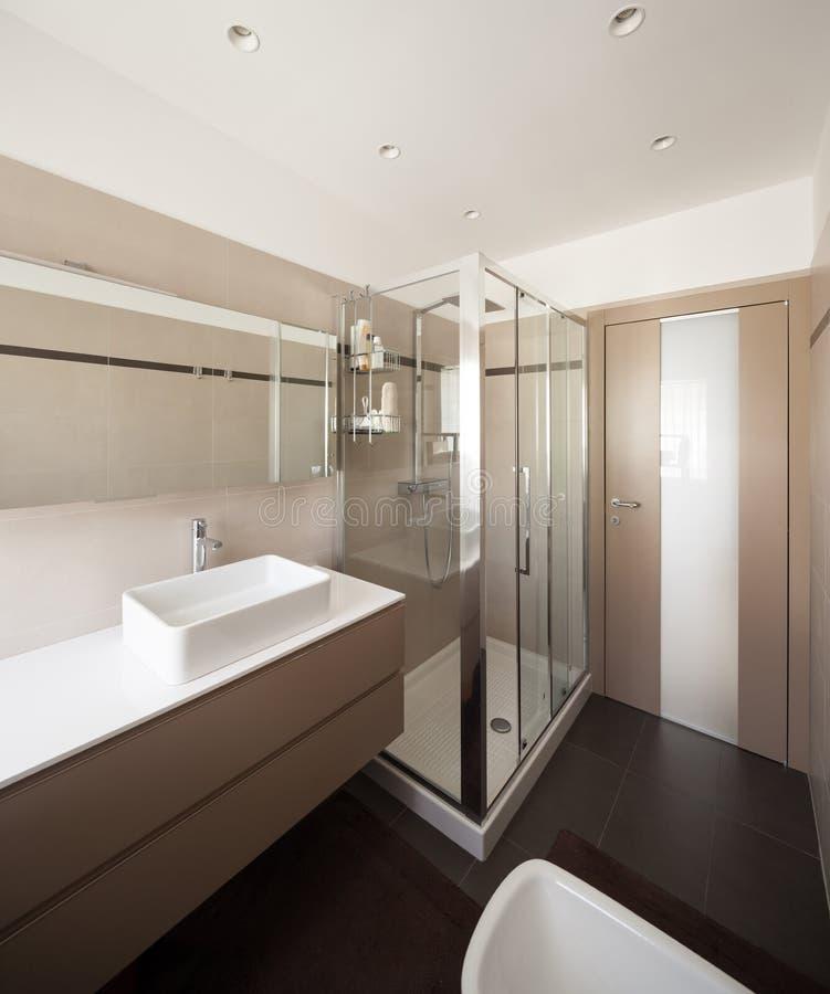 内部公寓、水槽和阵雨 免版税库存照片