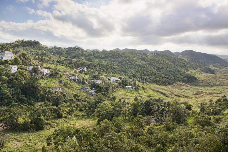 内部牙买加 免版税图库摄影