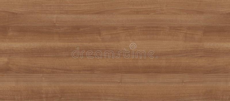 内部的自然木纹理 免版税图库摄影