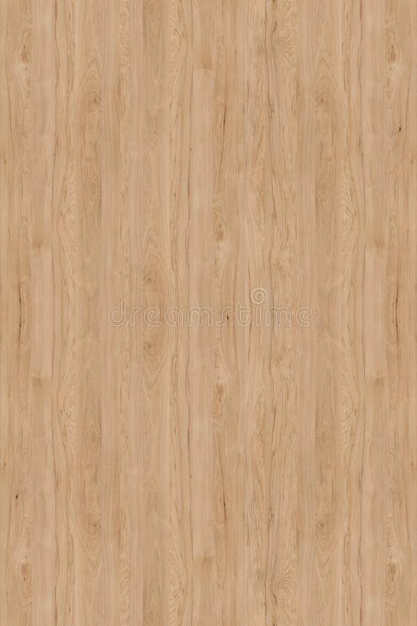内部的轻的木纹理 免版税库存图片