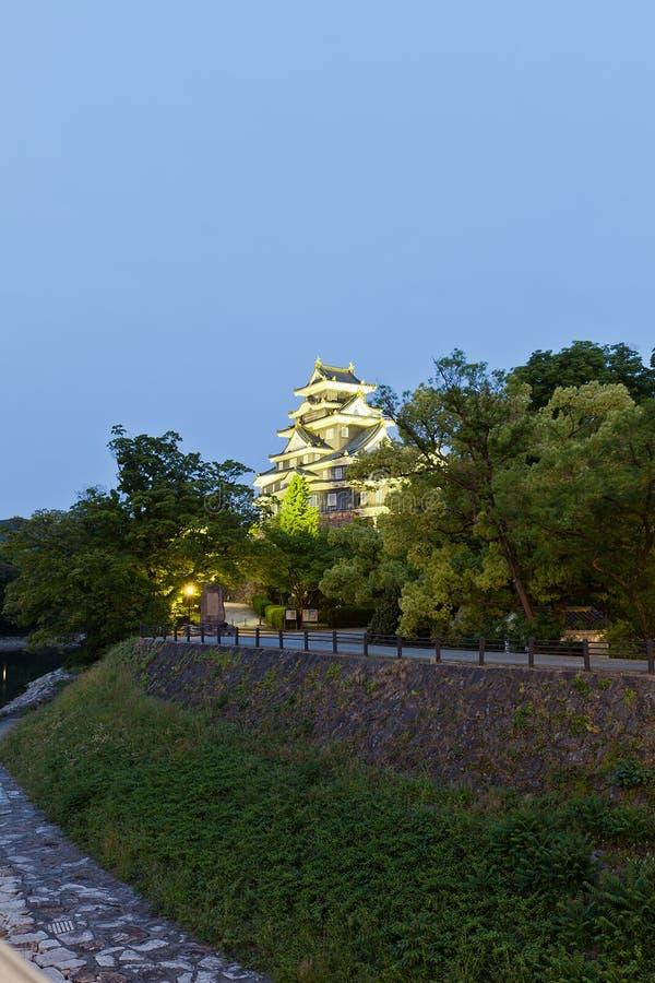 冈山城堡在晚上,日本 库存照片