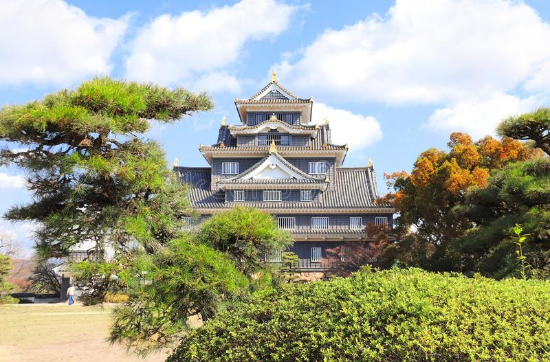冈山城堡掠夺防御,黑城堡,冈山,日本 图库摄影
