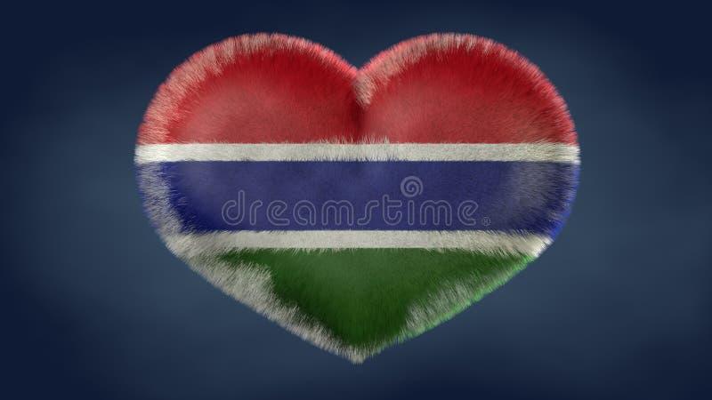冈比亚旗子的心脏 向量例证