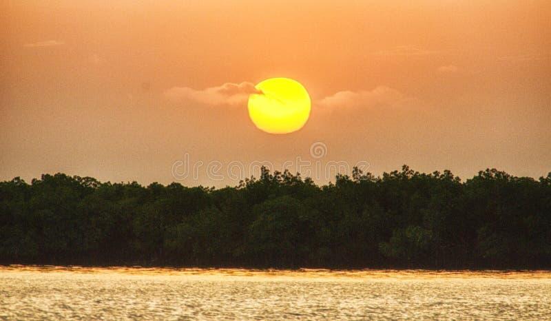 冈比亚河日落 免版税库存照片