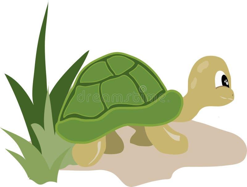 冒险乌龟 库存照片