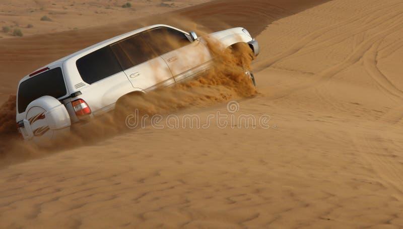 冒险沙漠徒步旅行队 库存照片