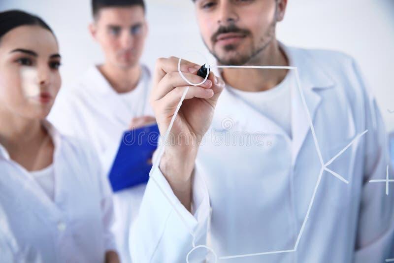 写化学式的医科学生在玻璃whiteboard 免版税图库摄影