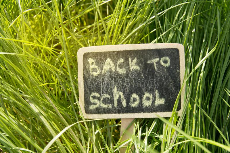 写回到学校,在黑板用了粉笔写反对绿草背景,明亮的阳光 库存照片