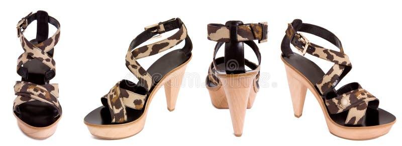 军事凉鞋样式妇女 免版税图库摄影