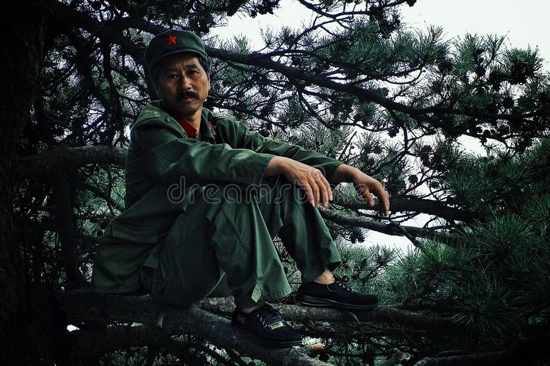 军用成套装备的人坐一棵树的分支与一个大红色星的在他的帽子 免版税库存照片