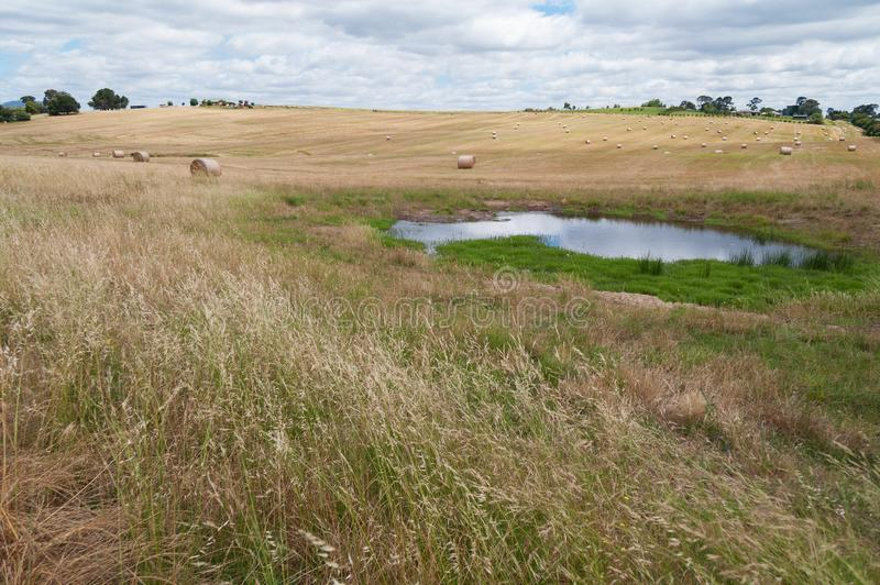 农业全景风景归档与秸杆大包 库存图片