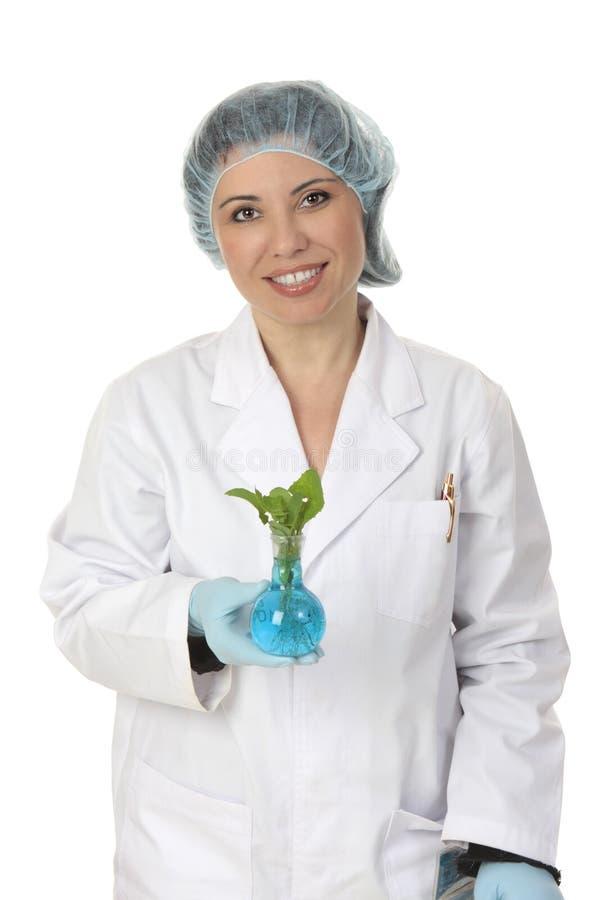 农业农学科学家 库存图片