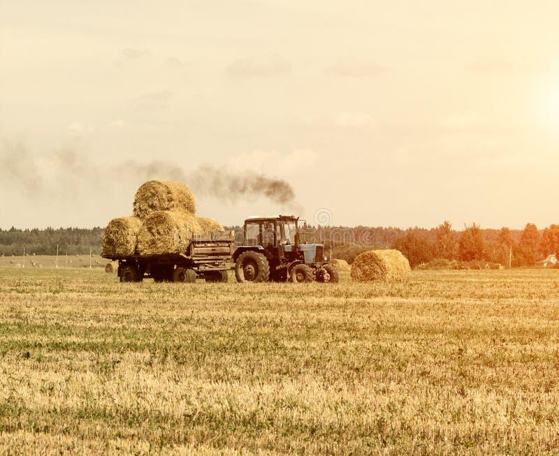 农业和拖拉机收集在农厂植物的秸杆大包 库存图片