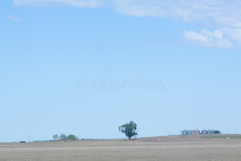 农业和筒仓 库存照片