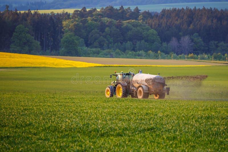农业在德国 免版税库存图片