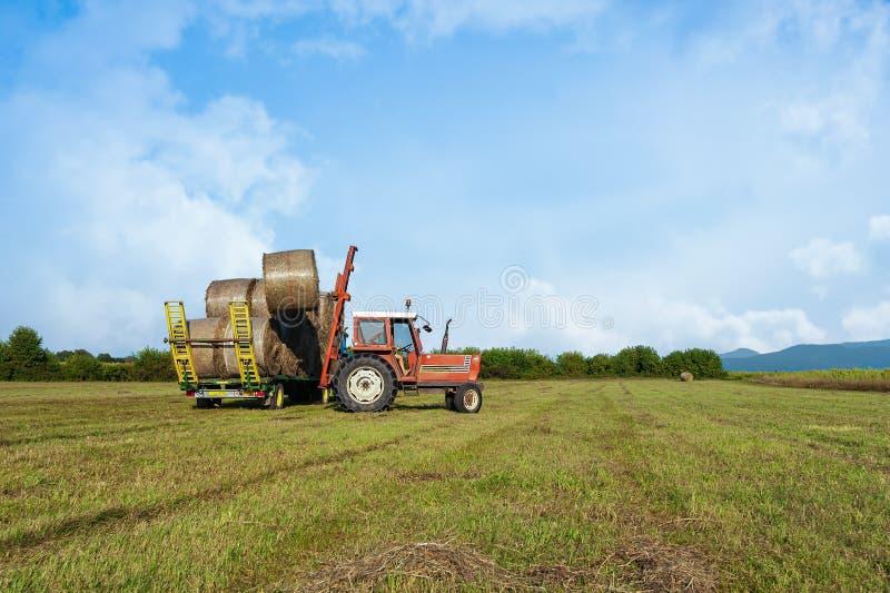 农业场面 在手推车的拖拉机增强的干草捆 免版税库存照片
