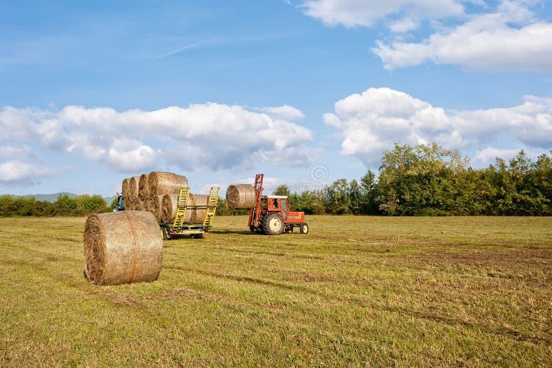 农业场面 在手推车的拖拉机增强的干草捆 免版税库存图片