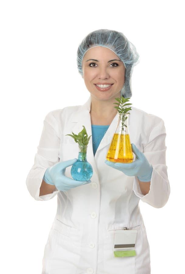 农业植物学家科学家 库存照片