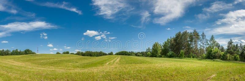 农业横向夏天 一个多小山领域的全景在蓝色多云天空下 免版税库存图片