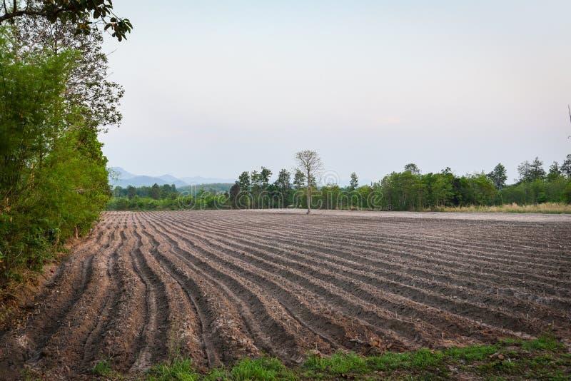 农业犁土壤为开始种植木薯领域农田做准备 免版税库存图片