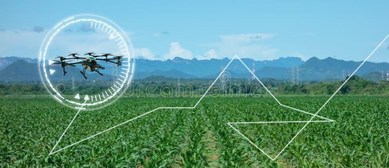农业的,各种各样的领域的寄生虫用途寄生虫象研究分析,安全,抢救,地形扫描技术,监视 向量例证