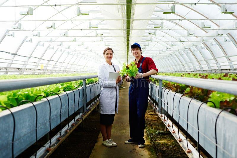 农业职员 免版税库存图片