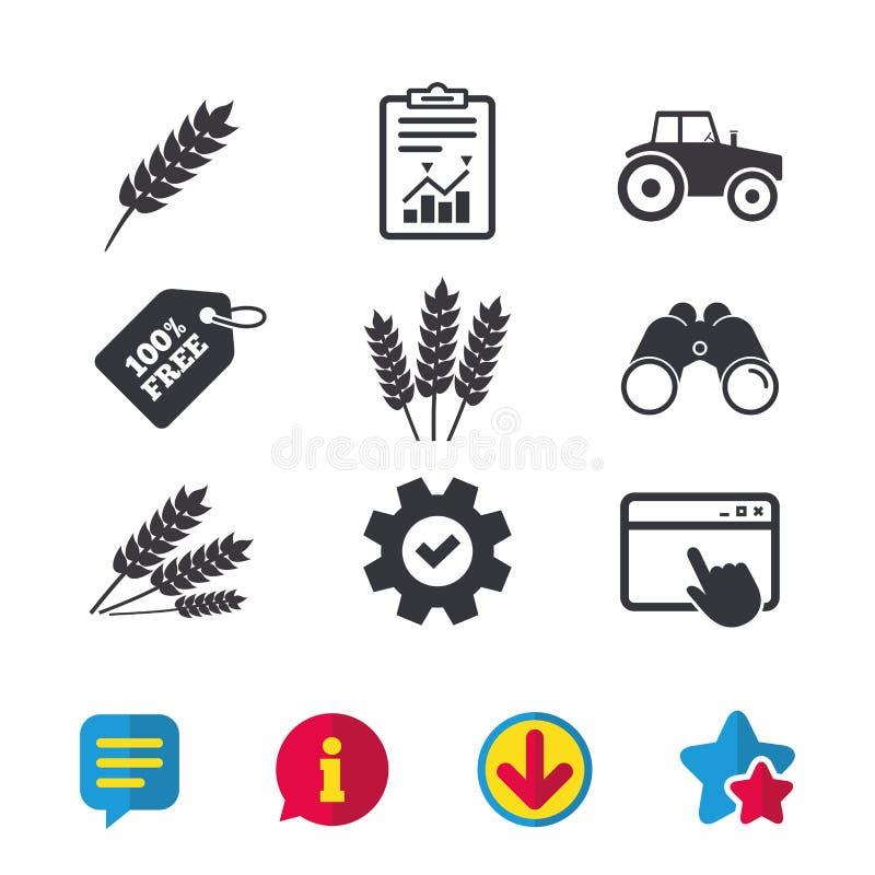 农业象 麦子玉米或面筋释放 向量例证
