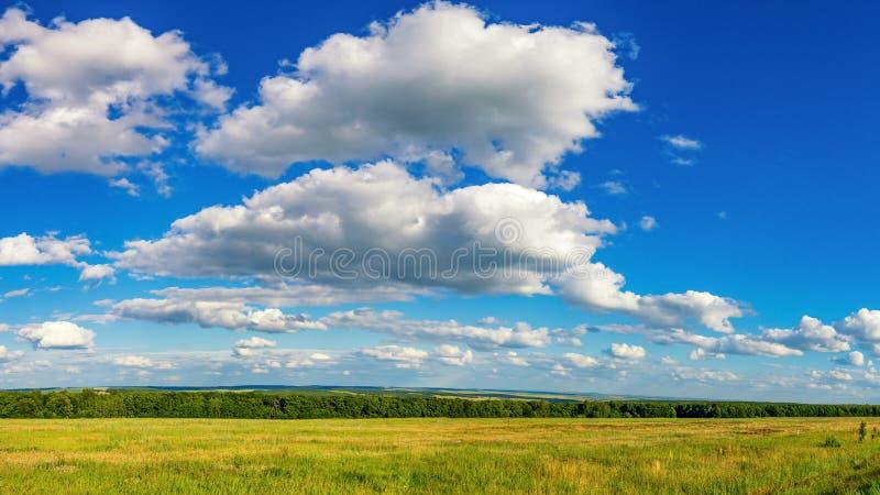 農業領域全景在與云彩的夏天晴天,俄羅斯圖片