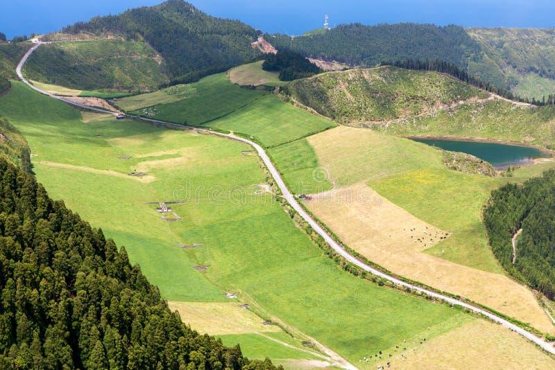 农业领域和牧场地在山区 库存照片