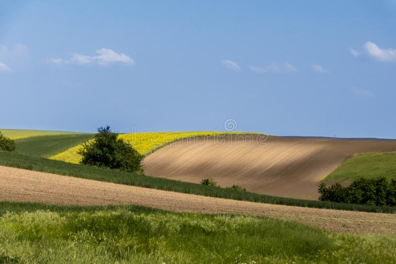 农业领域和蓝天 库存照片