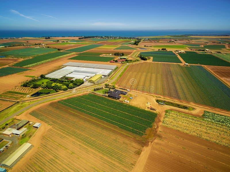农业领域风景在澳大利亚临近海洋海岸线 库存图片