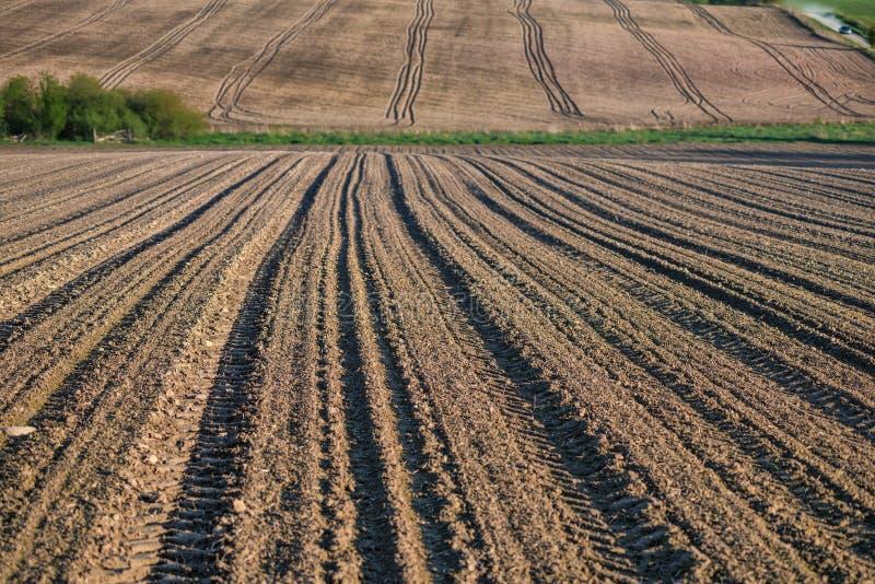 农业领域,被犁在收获以后,夏季, 免版税图库摄影