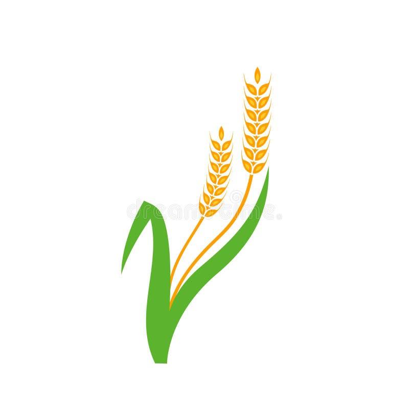 农业麦子商标模板 皇族释放例证