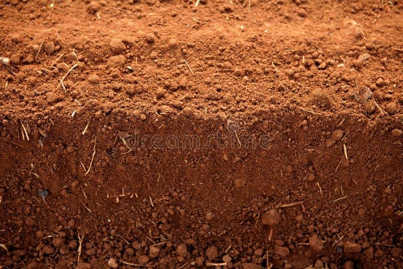 农业黏土领域耕了红色土壤 免版税库存照片