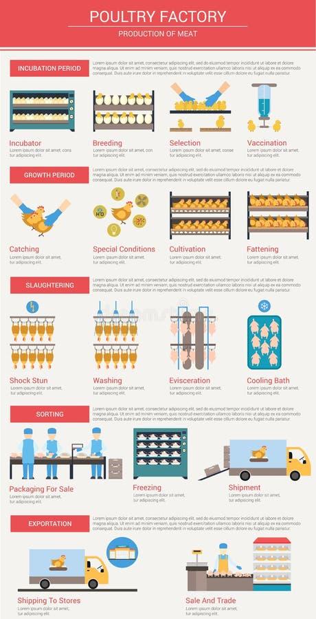 农业,畜牧业infographics 库存例证