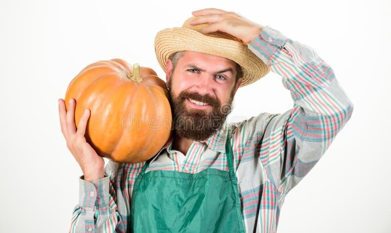 草帽农夫_农业comcept 农夫草帽运载大南瓜 种田和农业 农业种子肥料和