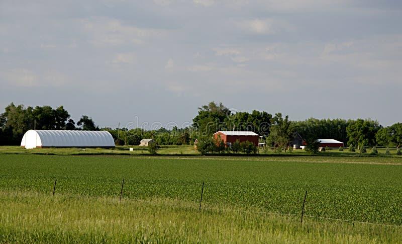 农业USA_IAWA  免版税库存照片
