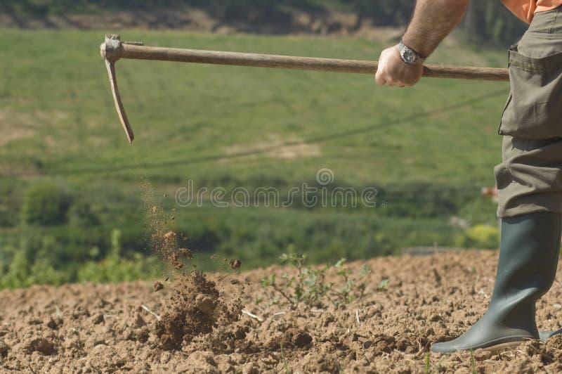 农厂农夫工作 库存照片