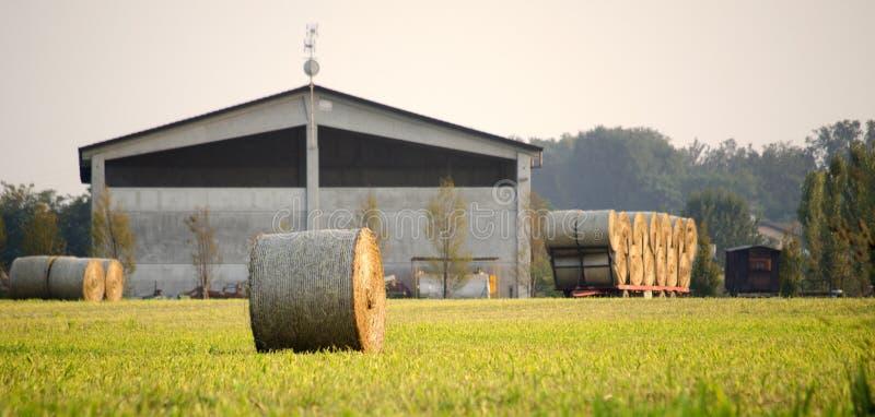 农厂和干草卷 库存照片