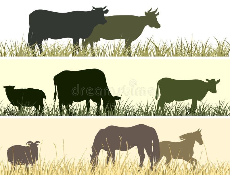 农厂宠物的水平的例证。 库存例证