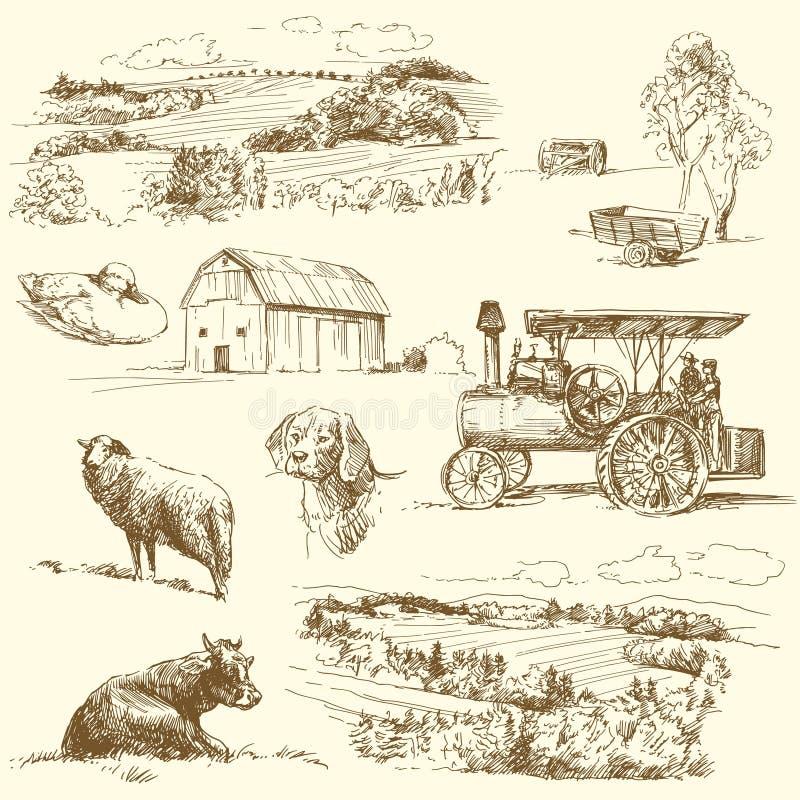 农厂收集 库存例证