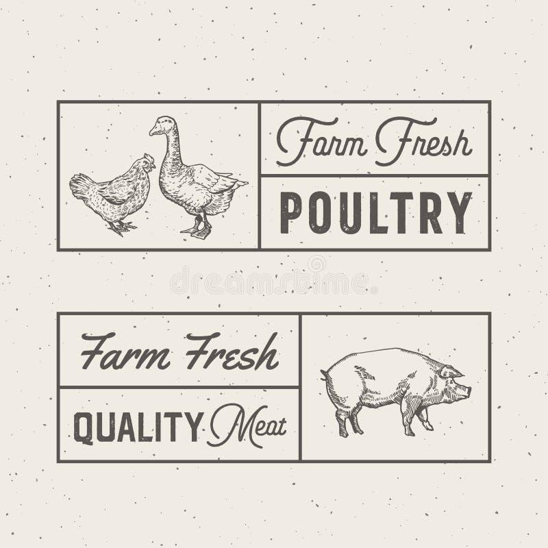 农厂新禽畜和肉抽象传染媒介标志、标志或者商标模板 手拉的板刻鸡,鹅和 皇族释放例证