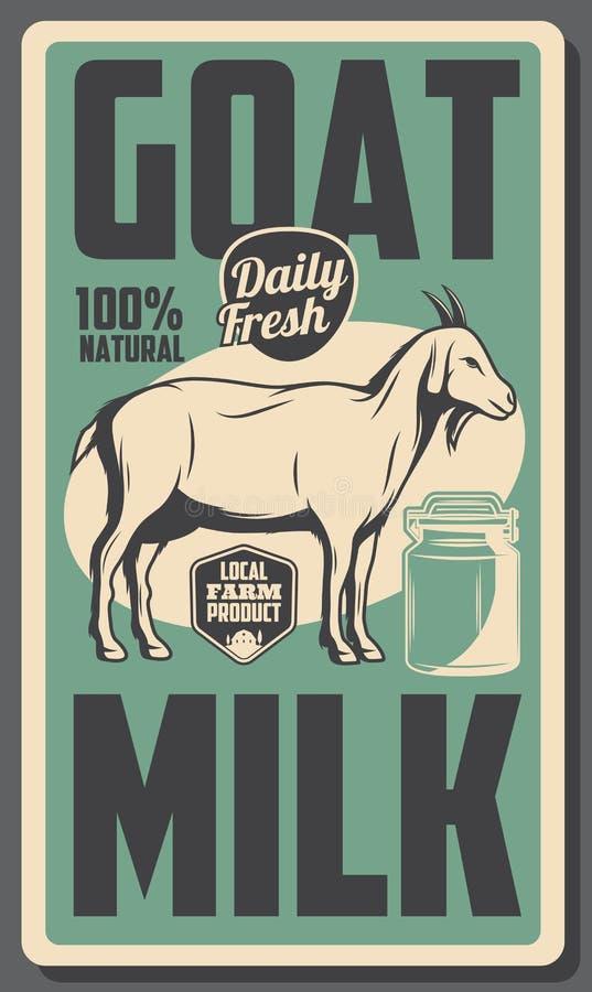 农厂牛奶店山羊牛奶,牛食品 库存例证