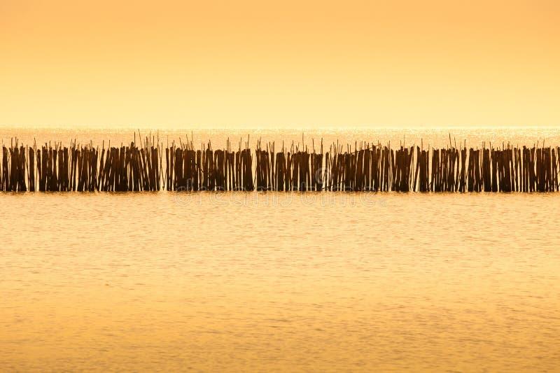 Download 农厂鱼 库存图片. 图片 包括有 抓住, 海运, 颜色, 天空, 商业, 海岸, 海景, 海鲜, 海岸线 - 22356595