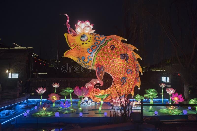 农历新年灯节,传统鲤鱼莲花样式 免版税图库摄影
