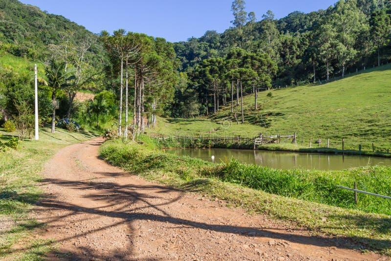 农场、湖、路和森林 库存图片