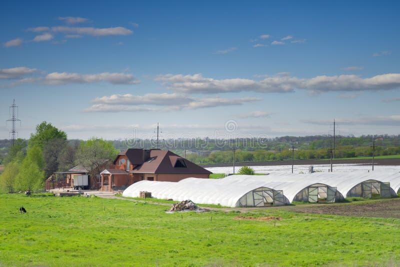 农场。 库存照片